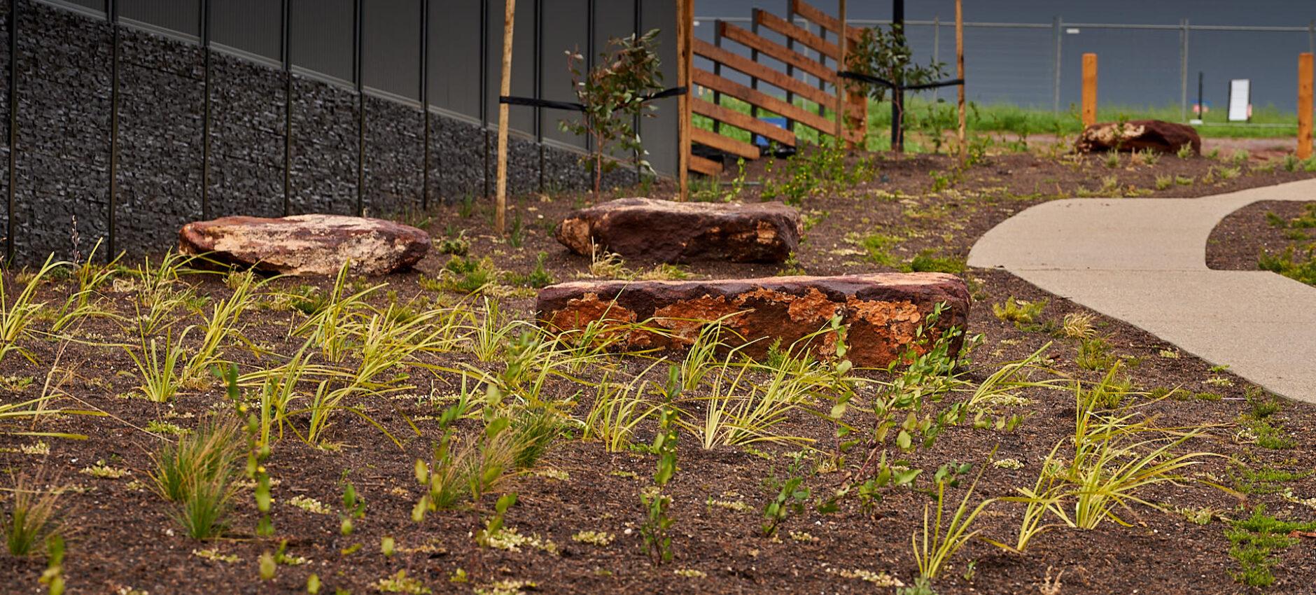 Space-Landscape_Springwood-Estate-Linear-Path_Jul2020_0037_LoRes.jpg