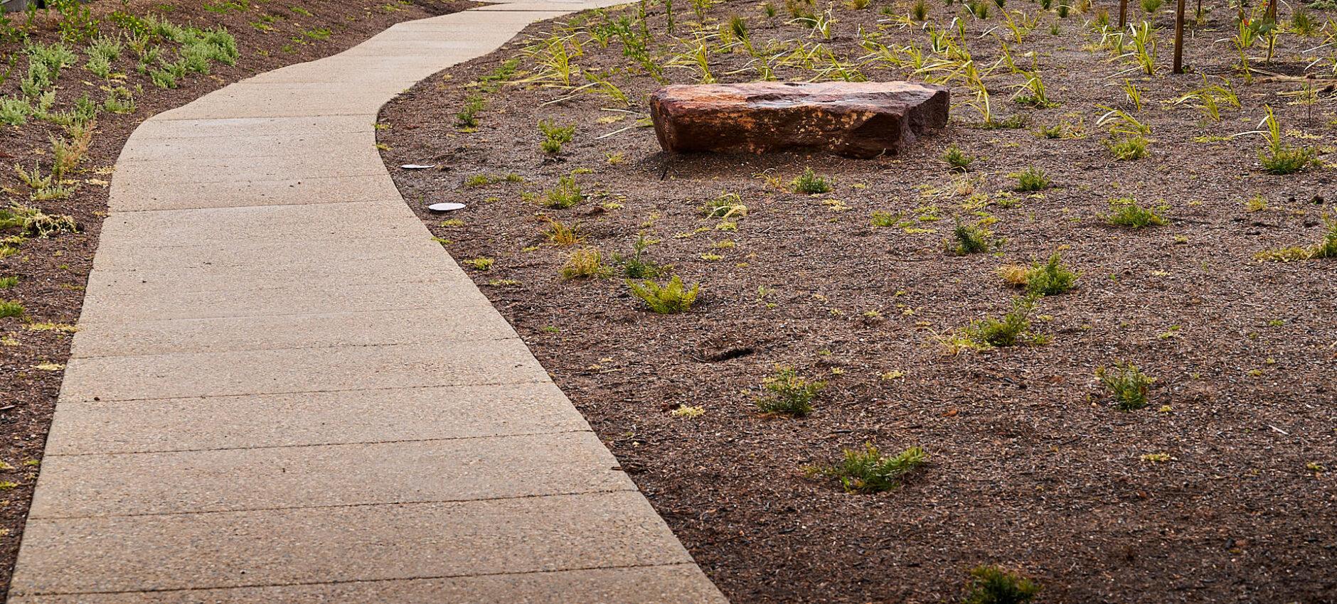 Space-Landscape_Springwood-Estate-Linear-Path_Jul2020_0040_LoRes.jpg